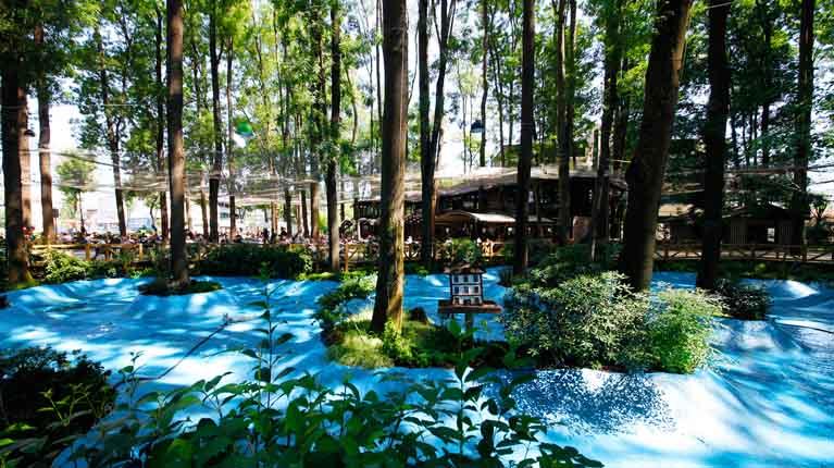 Ormanpak-Sakarya